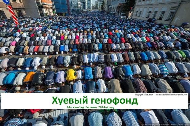 Hujevyj genofond - Moskva-bad, 2014