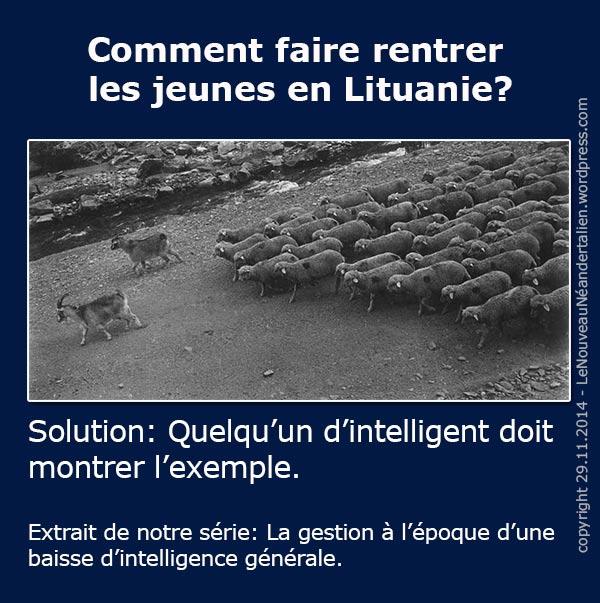 Как вернуть литовцев назад в Литву? На плакате и ниже - самое эффективное решение: кто-то умный должен показать правильный пример. В данном случае - козел ведет стадо баранов.